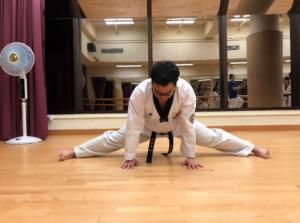 Common training in Taekwondo – Prime Rehab Dev Site